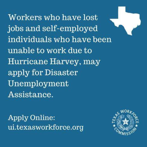 Hurricane Unemployment.jpg